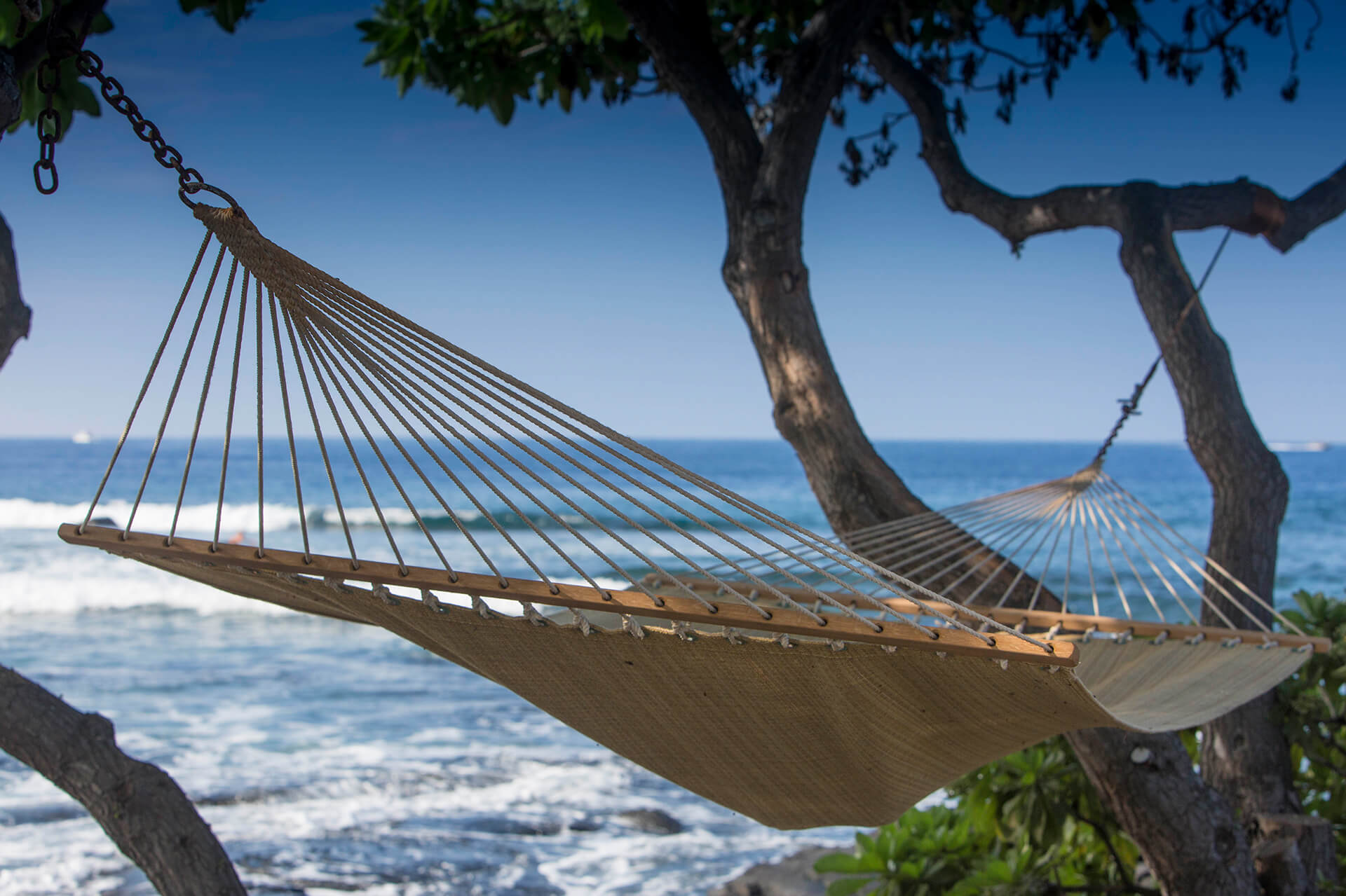 featured-option-hammock